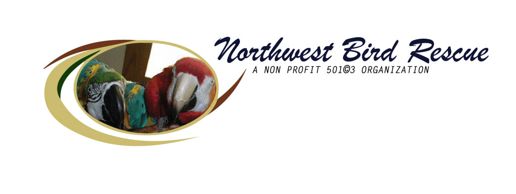 Northwest Bird Rescue